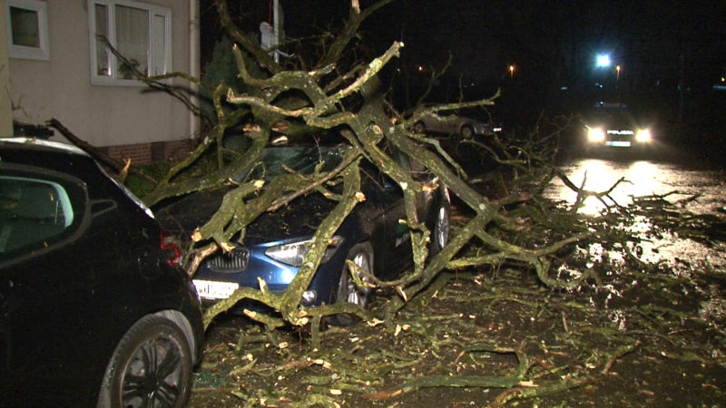 Kuriose Folgen des Sturms (Foto: SAT.1 NRW)