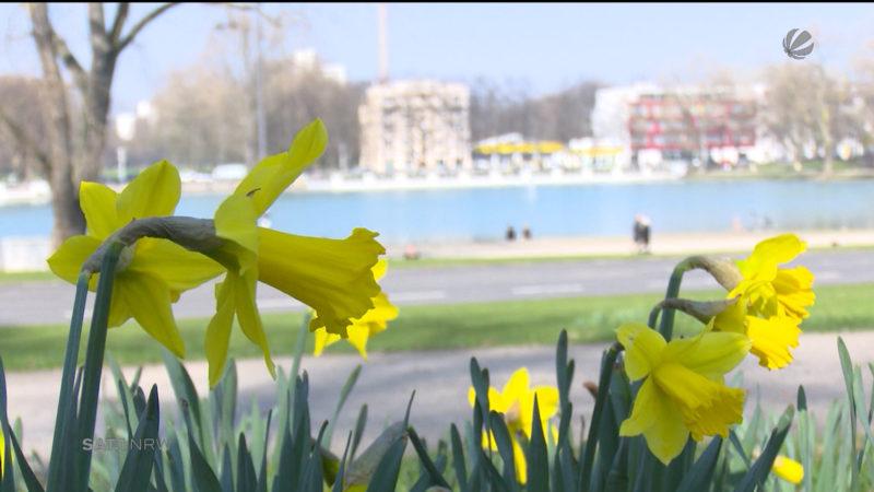 Frühlingsanfang in NRW (Foto: SAT.1 NRW)