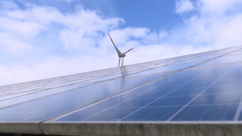 NRW - Windkraft meets Australia (Foto: SAT.1 NRW)