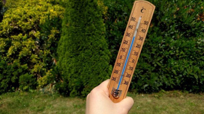 Hitze-Rekord im Mai (Foto: SAT.1 NRW)