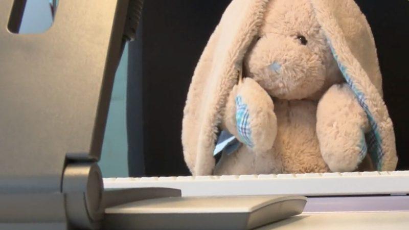 Süße Such-Anzeige: Plüsch-Hase sucht seinen Besitzer (Foto: SAT.1 NRW)