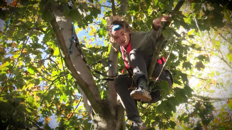 Baum-Protest (Foto: SAT.1 NRW)