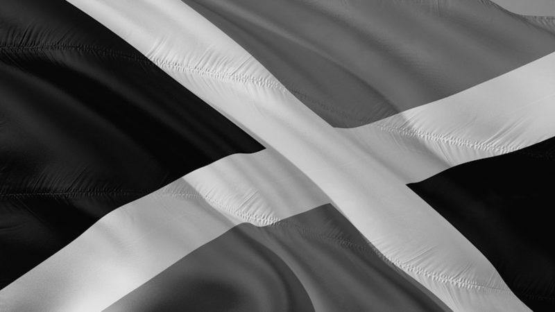 Umfrage: Wer ist Schuld am Scheitern von Jamaika? (Foto: SAT.1 NRW)