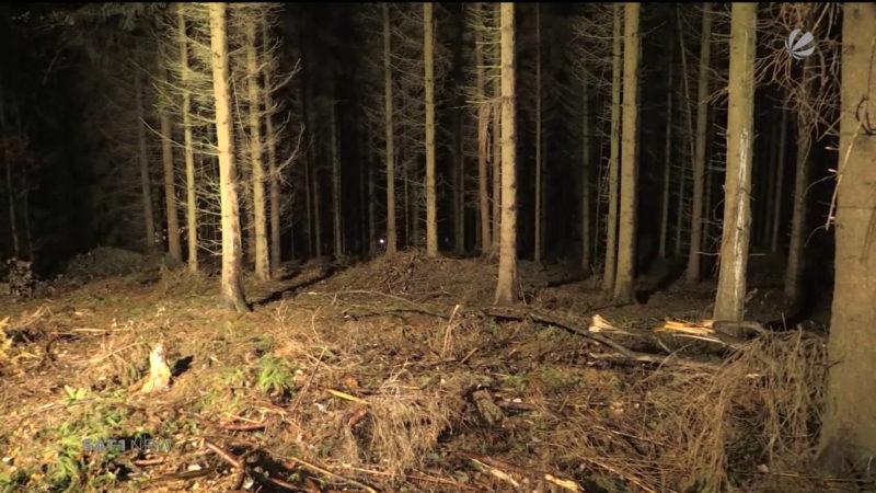 Leiche im Wald könnte Frau von Schlagersänger sein (Foto: SAT.1 NRW)