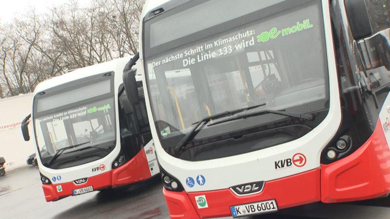 Elektrobusse in Köln (Foto: SAT.1 NRW)