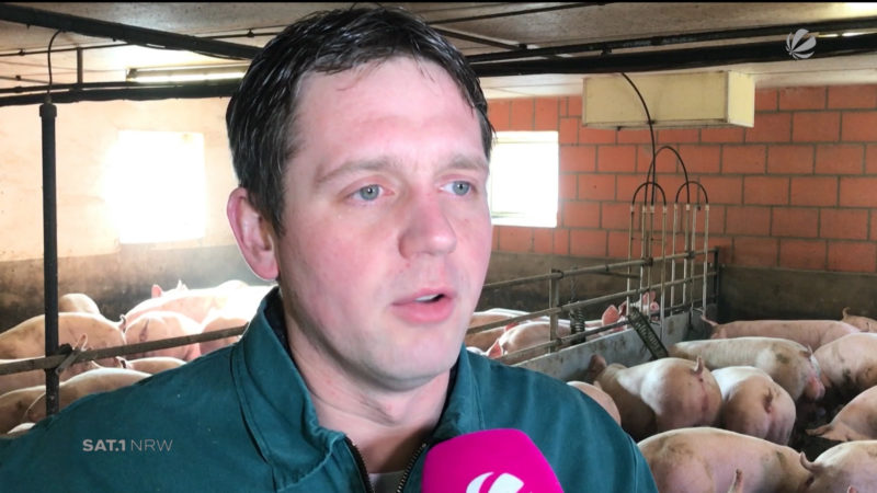 Bauern gegen Tierretter (Foto: SAT.1 NRW)