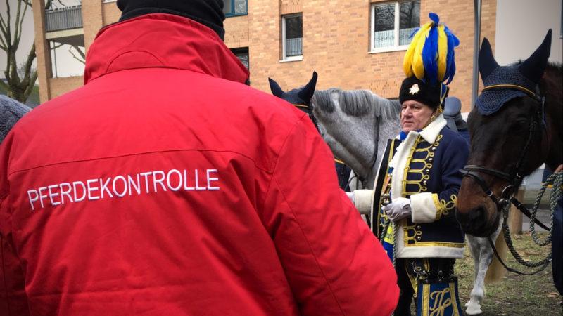 Stress-Test für Karnevalspferde (Foto: SAT.1 NRW)