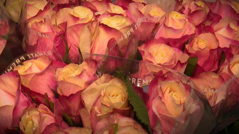Sag's durch die Blume! (Foto: SAT.1 NRW)
