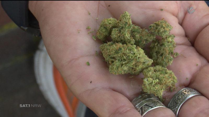 Cannabis-Nachfrage in NRW gestiegen (Foto: SAT.1 NRW)