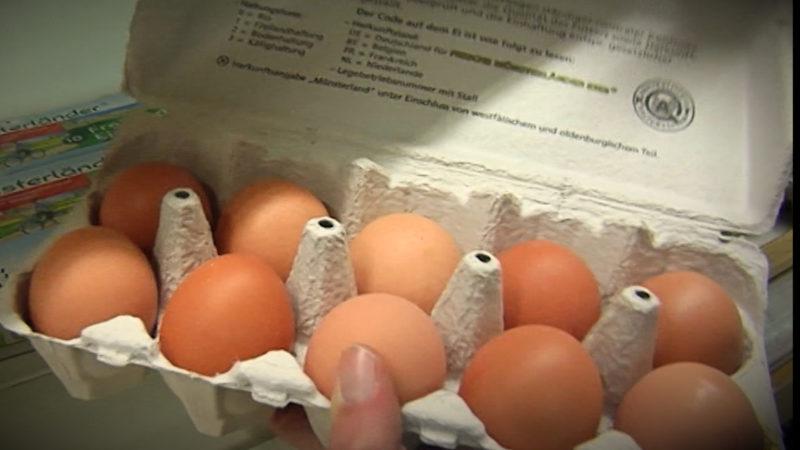 Ein Ei kommt selten allein (Foto: SAT.1 NRW)