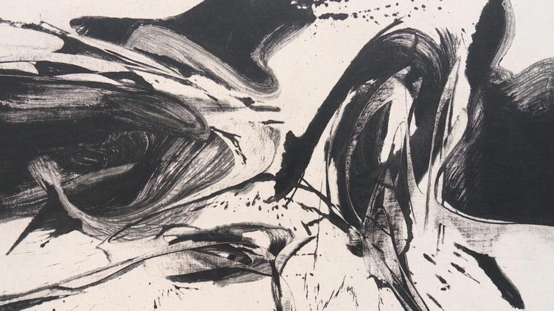 Ausstellung: Black & White (Foto: SAT.1 NRW)