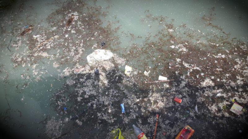 Babys leben im Müll (Foto: SAT.1 NRW)