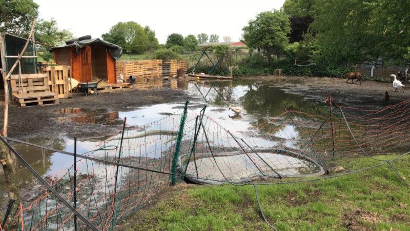 Unwetter zerstört Tierhof (Foto: SAT.1 NRW)