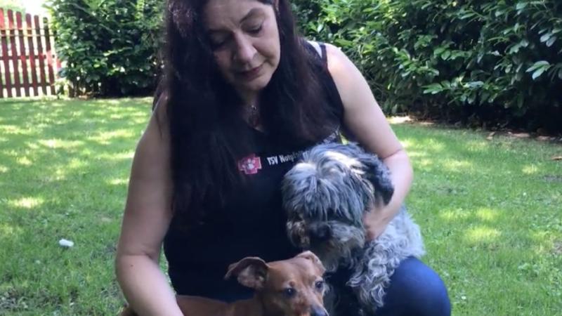 Muss ein Tierschutzverein Hundesteuern zahlen? (Foto: SAT.1 NRW)