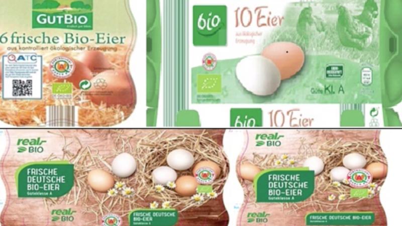 Salmonellen in Bio-Eiern (Foto: SAT.1 NRW)
