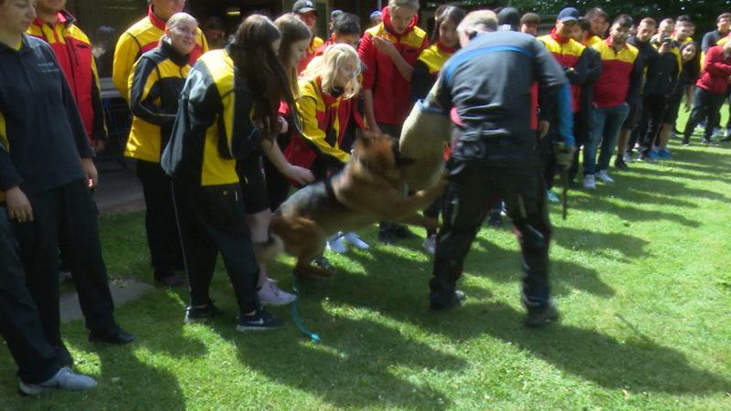 Hundetraining für Postboten (Foto: SAT.1 NRW)
