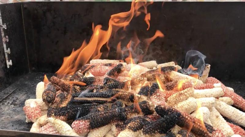 Mais als Grillkohle (Foto: SAT.1 NRW)