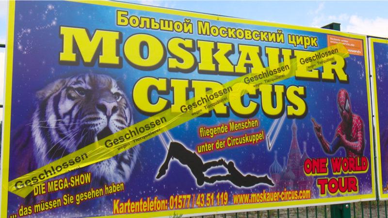 Tierschützer fälschen Zirkusabsage (Foto: SAT.1 NRW)