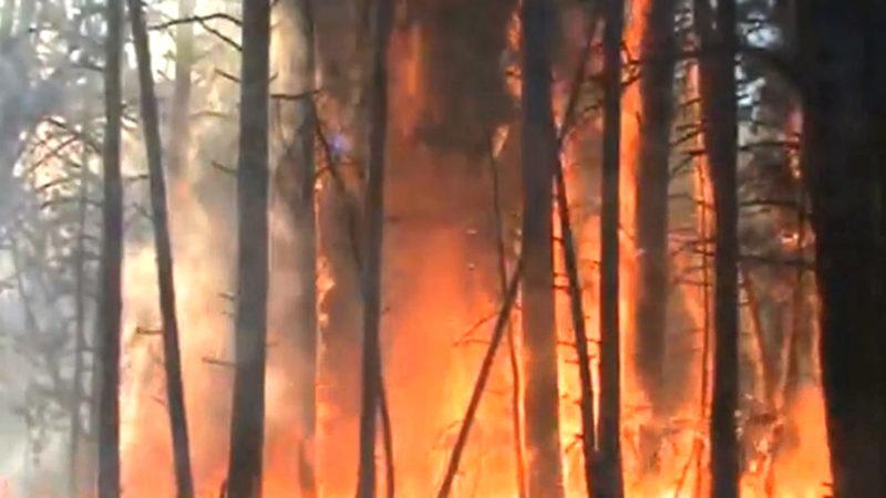 Waldbrandgefahr - Diese Frau weiß wie es ist gegen Flammen zu kämpfen (Foto: SAT.1 NRW)