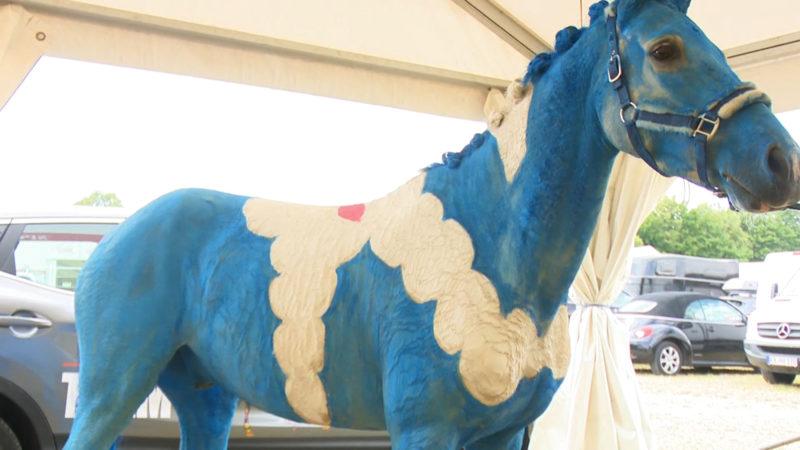 Wenn das Pferd zur Leinwand wird (Foto: SAT.1 NRW)