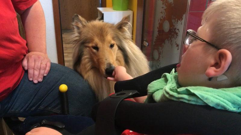 Tierische Hilfe für Jonas (Foto: SAT.1 NRW)