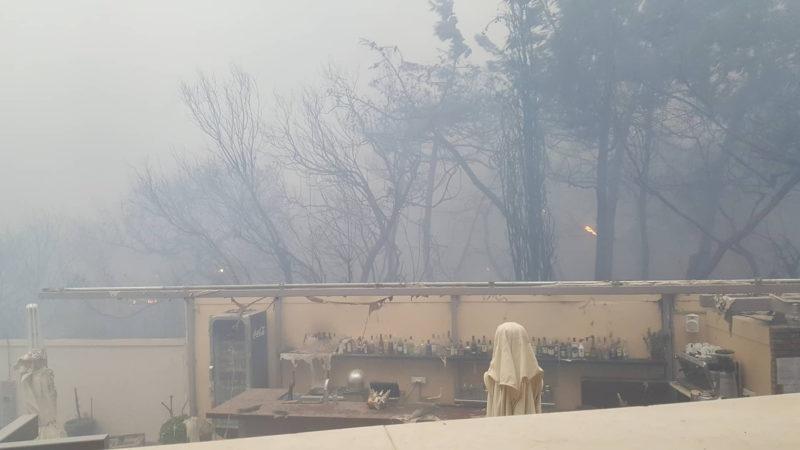 Aus dem Flammen gerettet - Wuppertaler Familie entkommt der Feuer Hölle in Griechenland (Foto: SAT.1 NRW)