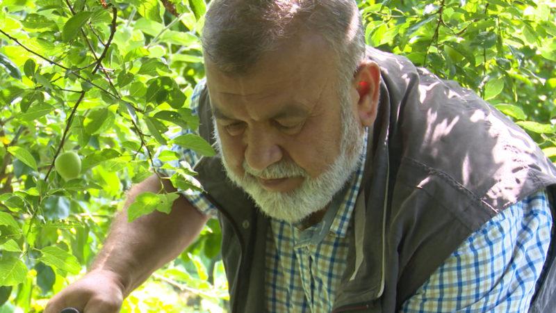 Yusuf Güclü ist Mustermigrant (Foto: SAT.1 NRW)