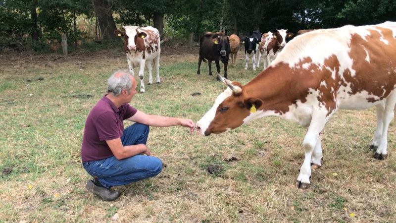 Hilfe für Landwirte? (Foto: SAT.1 NRW)
