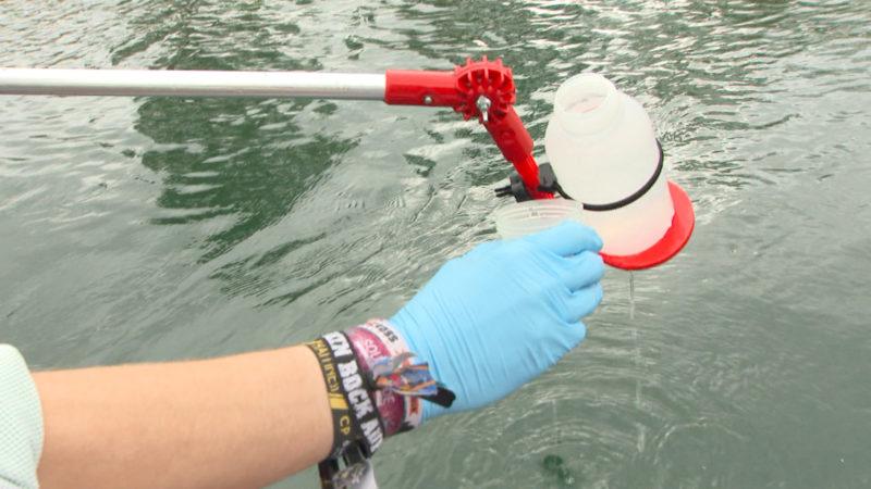 Greenpeace nimmt Wasserproben in Köln (Foto: SAT.1 NRW)