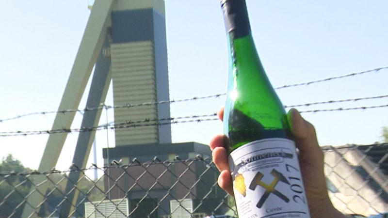 Wein statt Bergbau (Foto: SAT.1 NRW)