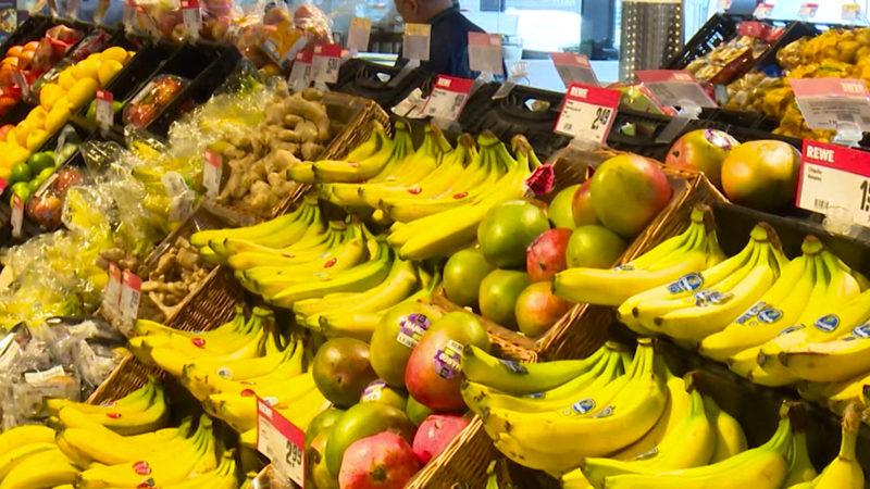 Riesenspinne in Bananenkiste entdeckt (Foto: SAT.1 NRW)
