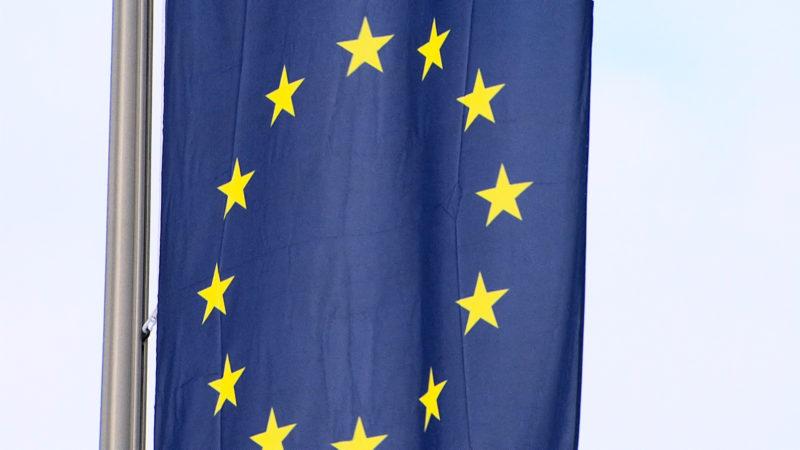 Demonstration gegen neue EU-Richtlinie (Foto: SAT.1 NRW)