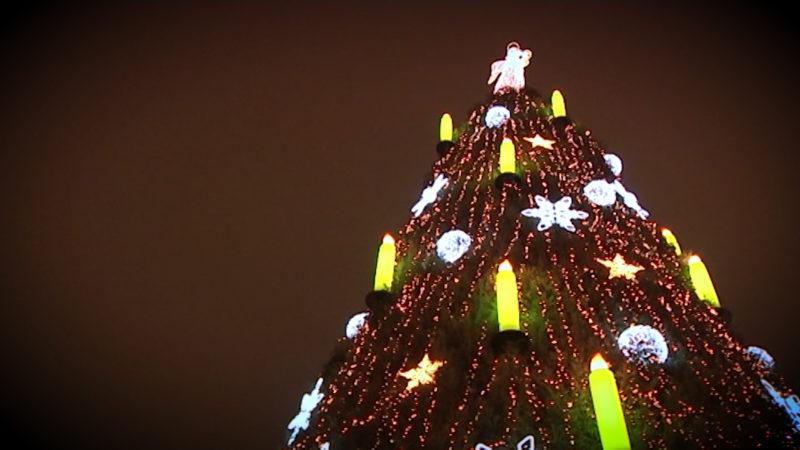 Wer hat den größten Weihnachtsbaum? (Foto: SAT.1 NRW)
