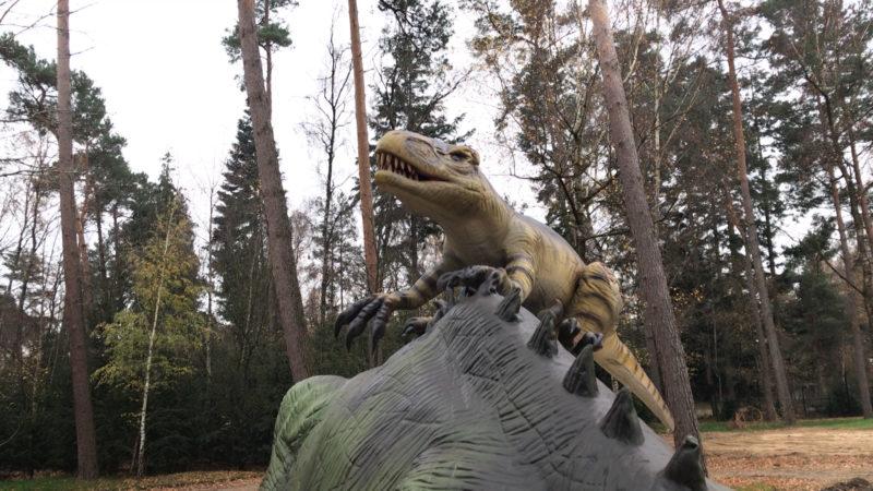 Die Dinos sind zurück! (Foto: SAT.1 NRW)