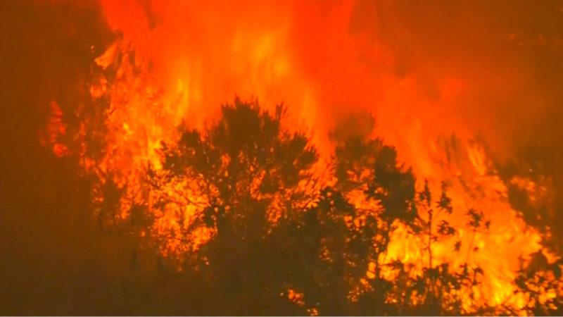 So dramatisch sind die Australien-Feuer (Foto: SAT.1 NRW)