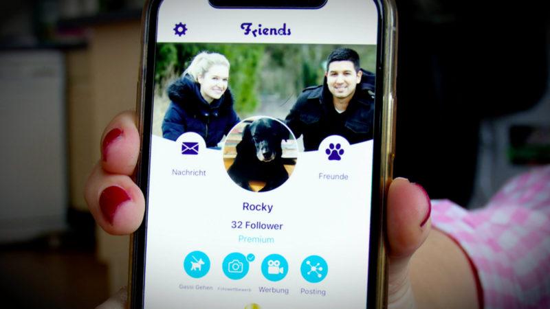 Soziales Netzwerk für Hunde (Foto: SAT.1 NRW)