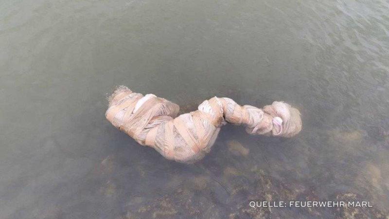 Kurioser Fund im Wasser (Foto: SAT.1 NRW)