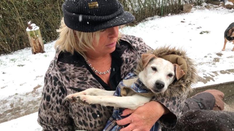 Tierschützerin betreibt Hundehospiz (Foto: SAT.1 NRW)