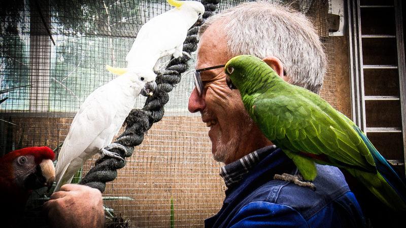 Mann lebt mit 130 Papageien (Foto: SAT.1 NRW)