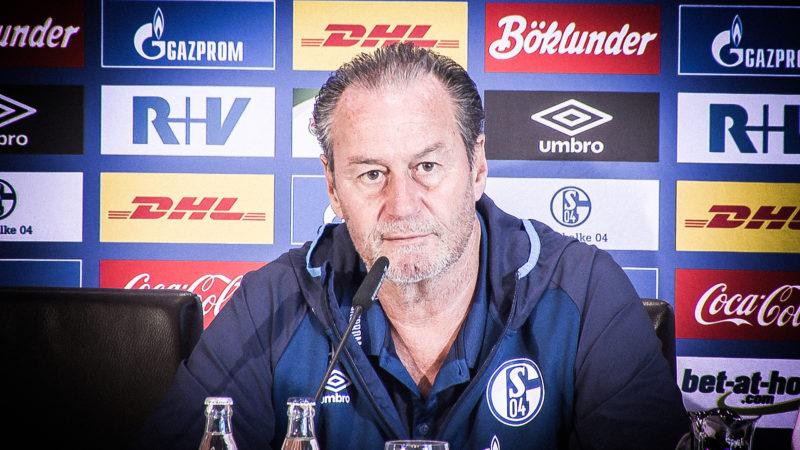 Huub Stevens übernimmt Schalke (Foto: SAT.1 NRW)