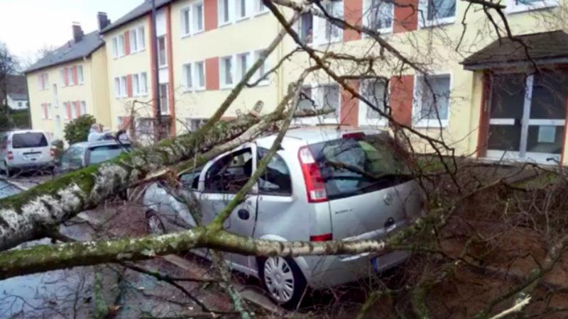 Sturm Eberhard verwüstet NRW (Foto: SAT.1 NRW)