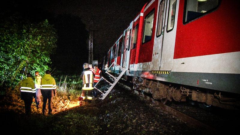 S-Bahn im Wald evakuiert (Foto: SAT.1 NRW)