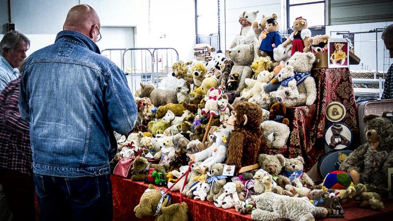 Teddybärenmesse in Münster (Foto: SAT.1 NRW)