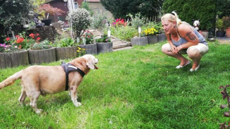 Hund Benny hat ein neues Zuhause (Foto: SAT.1 NRW)