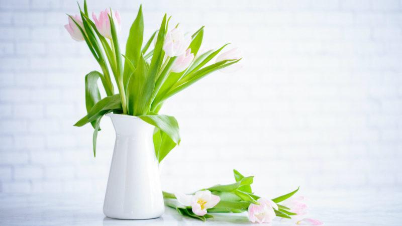 Schnittblumen gelten ebenso wie Theaterkarten, Taxifahrten oder Rennpferde als Waren des täglichen Bedarfs - sie werden mit sieben Prozent besteuert... (Foto: SAT.1 NRW)