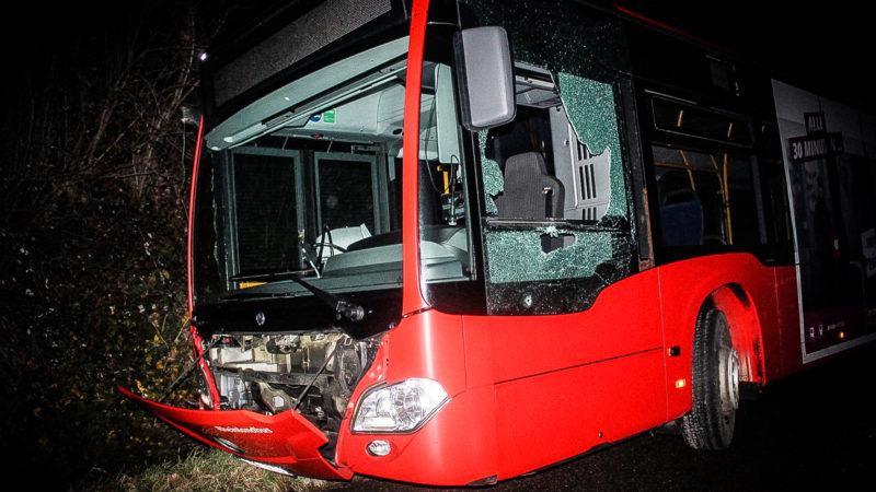 Crashkurs mit geklautem Bus (Foto: SAT.1 NRW)