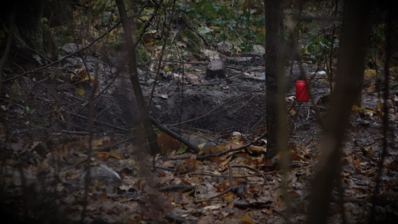 26-jährige tot im Wald gefunden (Foto: SAT.1 NRW)