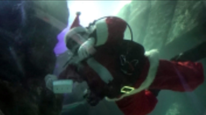 Weihnachtsmann geht baden (Foto: SAT.1 NRW)