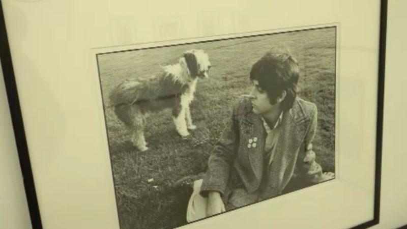 McCartney-Ausstellung in Oberhausen (Foto: SAT.1 NRW)