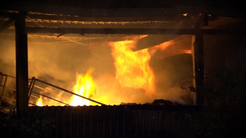 Serien-Brandstifter gefasst (Foto: SAT.1 NRW)